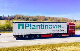 Plantinavian ainutlaatuinen kuljetus
